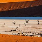 Light and Shadow at Deadvlei by Jill Fisher