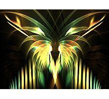 Yellow Plumes Photographic Print
