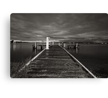 Squid's Ink Canvas Print