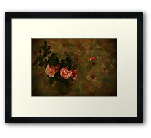 La vie en rose Framed Print