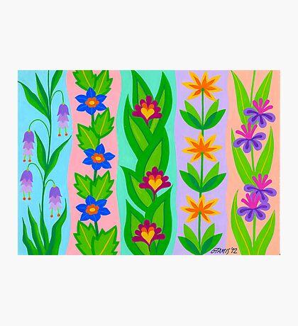 FLOWER SPLENDOUR - AQUAREL Photographic Print