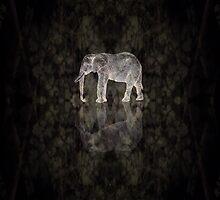 Elefant by Mihai Croitoru