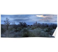 Desert Dawn - Guadalupe Mountains Poster