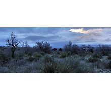 Desert Dawn - Guadalupe Mountains Photographic Print