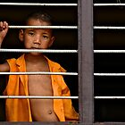 Little Monk in the Window by Valerie Rosen