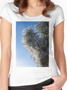 Toronto Ice Storm 2013 - Pine Needle Flowers in the Sky Women's Fitted Scoop T-Shirt