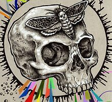 Skull and Hawkmoth by Bryan Collins