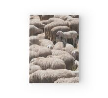 lambs and sheep in the flock in the mountains Hardcover Journal