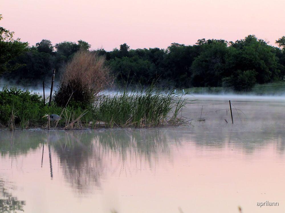 Heron Searching for Breakfast in the Mist by aprilann