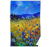 Cornflowers 45 Poster