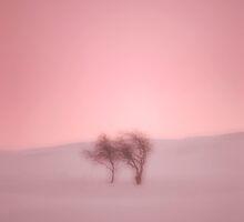Tranquility  by Ian Jeffrey