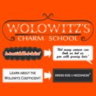 Wolowitz's Charm School by Fiona Reeves