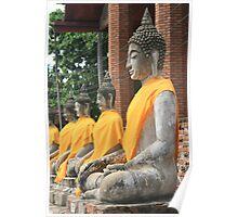 Buddha statues Poster