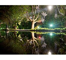 Tranquility in the midst of the City Photographic Print