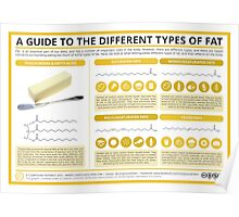 A Guide to Different Types of Fat Poster