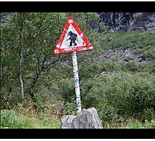 Warning! Crossing Trolls Photographic Print