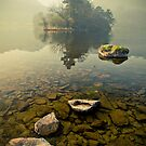 Misty Clarity by Brian Kerr