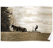 Spring Plowing Poster