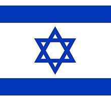 National flag of the State of Israel - high quality authentic file by Bruce Stanfield