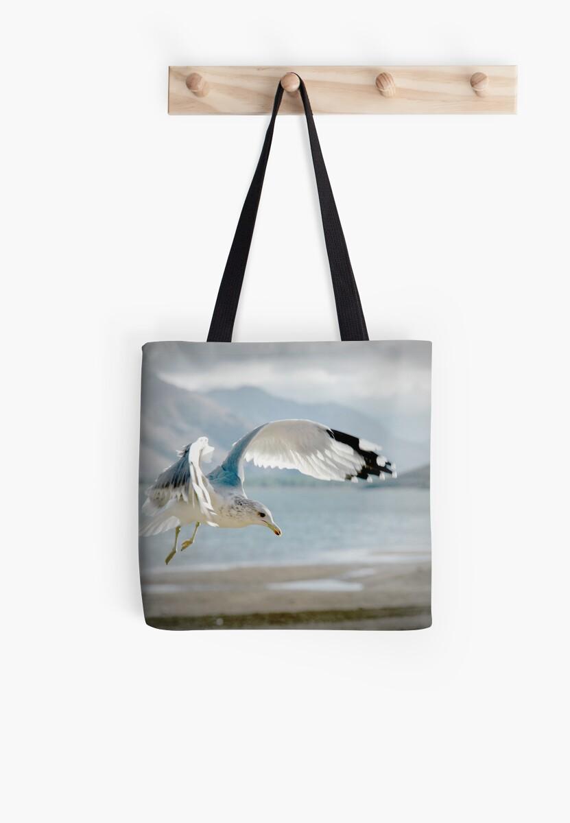 Seagull Landing by Corri Gryting Gutzman