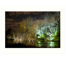 Illuminated trees at St James Park London by night Art Print