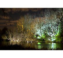 Illuminated trees at St James Park London by night Photographic Print