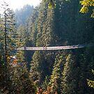 Capilano Suspension Bridge by Steve Hunter