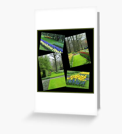 April in the Keukenhof Gardens Collage Greeting Card