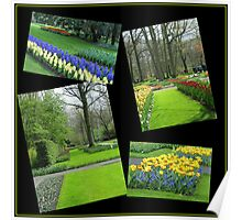 April in the Keukenhof Gardens Collage Poster
