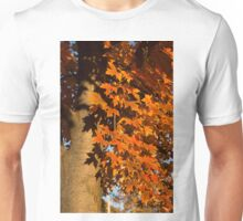 Crisp Autumn Shadows  Unisex T-Shirt