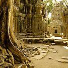 Cambodia: Temples - Ta Prohm by Scott G Trenorden
