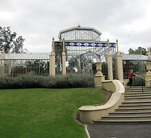 Tropical Palm House, Adelaide Botanic Gardens, S.A. by Rita Blom