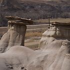 Drumheller Hoodoo by Heather Eeles