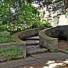 Curving Garden Steps, Skylands Manor, Ringwood NJ by Jane Neill-Hancock