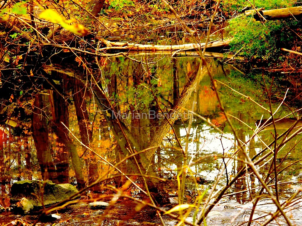 Above and below stirs the waters of fall by MarianBendeth