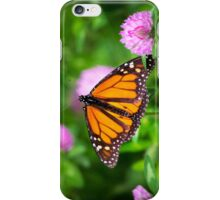 Monarch Butterfly on Pink Flowers iPhone Case/Skin