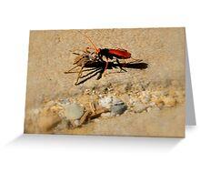 Bug Time Greeting Card