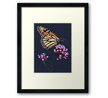 Monarch tee2/prints/products Framed Print