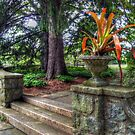 Stone Garden Steps, Skylands Manor, Ringwood NJ by Jane Neill-Hancock