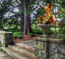 Stone Garden Steps, Skylands Manor, Ringwood NJ by Jane Neill-Hancock