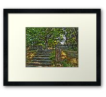 The Path to Lambert Castle Lookout Tower Framed Print