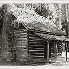 Log Cabin by oracle336