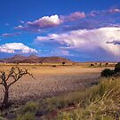 The Desert at Dusk by Jill Fisher
