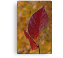 The Warm Glow of Fall - a Vertical View Canvas Print