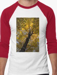 Under the Golden Autumn Canopy Men's Baseball ¾ T-Shirt