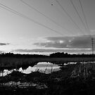 electric line by Jari Hudd