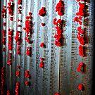 Remembrance  by Evita