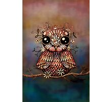 little rainbow flower owl Photographic Print