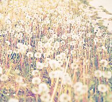 Field of Dreams (Version 2 Vertical) by laruecherie