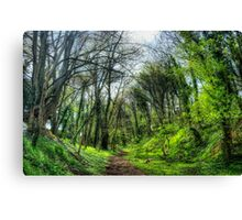 Green Forest Path Canvas Print